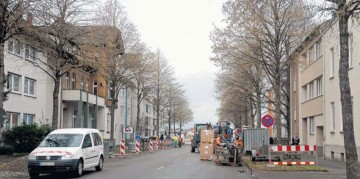 Nordstraße mit Baumbestand, Foto: MK